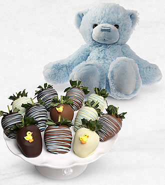 Belgian Chocolate Dipped Baby Boy Sweetness Berries with Plush Bear
