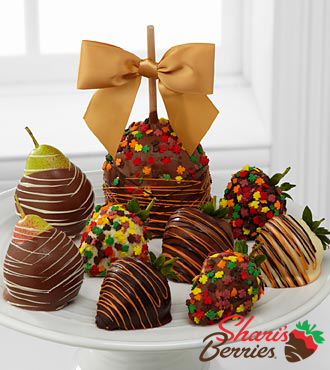 Chocolate Dip Delights™ Real Chocolate Fall Fruit Trio