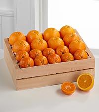 Simply Citrus Gift Basket - Better