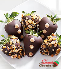 Shari's Berries™ Limited Edition Chocolate Dipped Peanut Brittle Strawberries - 6 piece