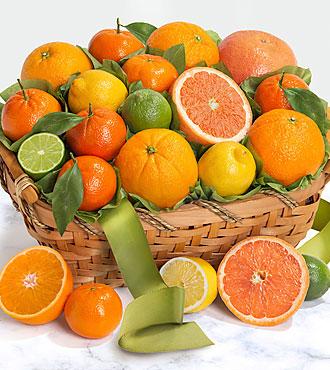 Sweet Sunshine Citrus Basket
