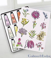 Crabtree & Evelyn Hand Therapy Paint Tin