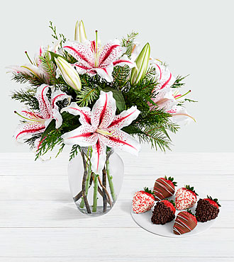 Candy Cane Lilies with 6 Christmas Strawberries