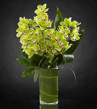 Bouquet d'orchidées Vision Luxury - 8tiges - VASE INCLUS