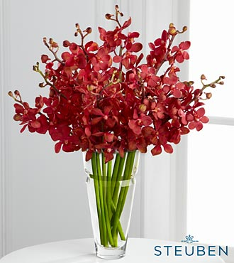 Sumptuous Luxury Orchid Bouquet in Crystal Steuben Glass Vase - 10 Stems