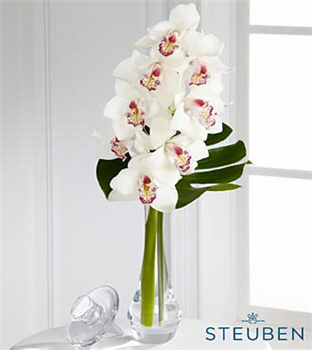 Charismatic Luxury Orchid Bouquet in Crystal Steuben Glass Bud Vase - 1 Stem