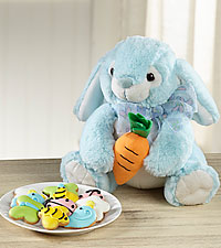 Mini Spring Cookies with Plush Bunny