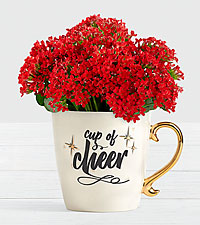 4.5' Red Kalanchoe