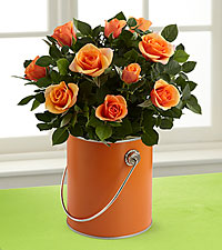 The Color Your Day with Laughter™ Mini Rose Plant by FTD®