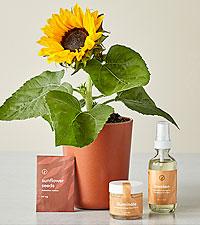 Shine Bright – Radiant Positivity Kit