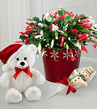 Make It Merry Cactus, Snowman Lollipop & Plush Bear-BEST