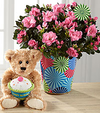 Pinwheel Party Happy Birthday Azalea with Plush Bear