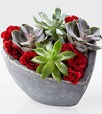 Love Wins Valentine's Day Succulent Garden
