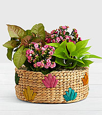 Perfectly Pink Garden in Colorful Basket