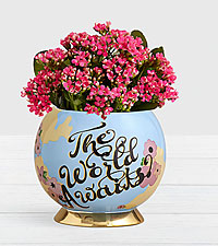 Fresh Blooming Decor Calendiva in World Container