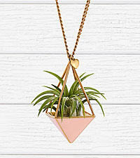 Blush Airplant Necklace