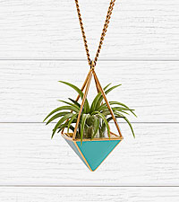 Teal Airplant Necklace