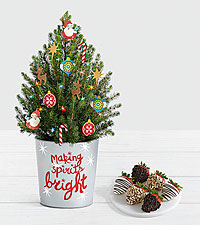 Santa's Workshop Spruce Tree with Half Dozen Gourmet Dipped Fancy Strawberries