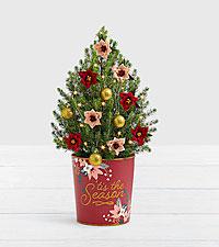 Christmas Poinsettia Spruce Tree