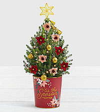 Poinsettia Christmas Tree with Star