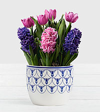 Royal Bulb Garden in Delft Ceramic Planter