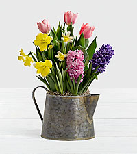 Mother's Day Bulb Garden