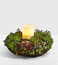 Succulent Candle Ring