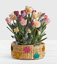 New Beginnings Bulb Garden in Colorful Basket
