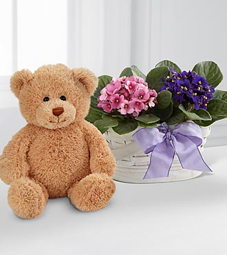 Violet Views Blooming Basket with Bear