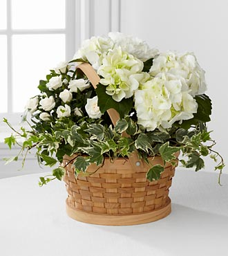Whispers of Peace Sympathy Basket - Good