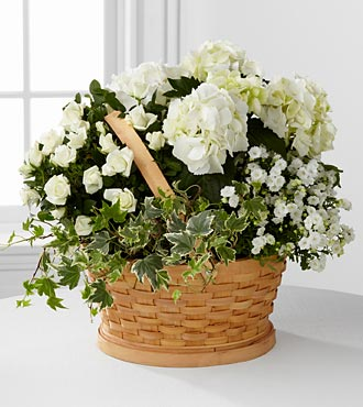 Whispers of Peace Sympathy Basket - Best