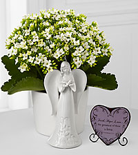 Angel Inspirations Kalanchoe Plant with Faith, Hope, Love Heart