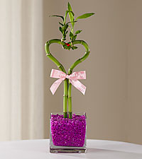 Magnificent Mom Mothers Day Bamboo - GOOD