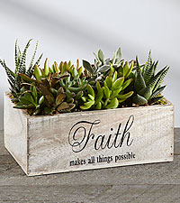 Keep the Faith Succulent Window Box