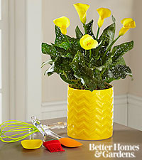 The FTD® Culinary Calla Lily with Utensil Set by Better Homes and Gardens®