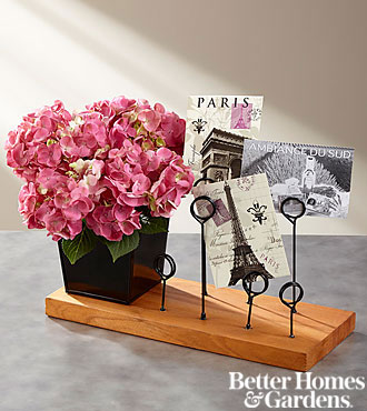 The FTD® Storyteller Blooming Hydrangea with Messenger Board by Better Homes and Gardens®
