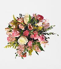 Bubbly & Bright - No Vase
