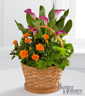 The FTD® Harvest Wishes Blooming Basket by Better Homes and Gardens® - GOOD