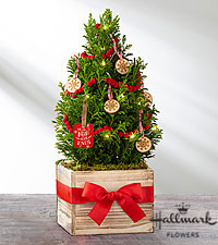 The FTD®True Traditions Christmas Tree by Hallmark