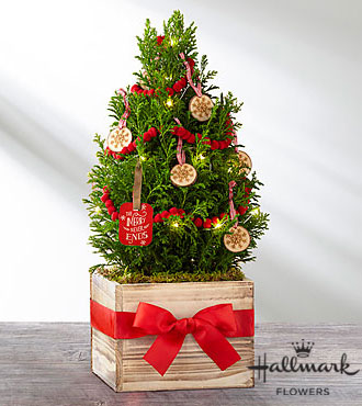 The FTD®True Traditions Christmas Tree by Hallmark