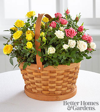 The Better Homes and Gardens® Rose Garden Basket