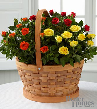 The FTD® Blooms of Fall Rose Garden Basket by Better Homes and Gardens®