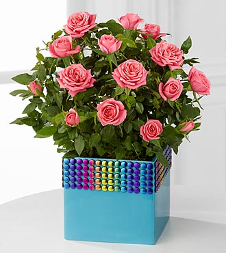 The FTD® Pick-Me-Up® Rainbow Skies Mini Rose