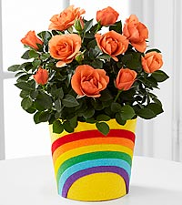 The FTD® Pick-Me-Up® Rainbow Roads Mini Rose