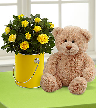 The Color Your Day with Sunshine™ Mini Rose Plant by FTD® with Plush Bear