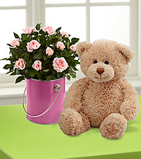 The Color Your Day with Happiness™ Mini Rose Plant by FTD® with Plush Bear
