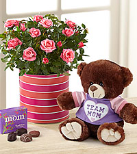 Just for Mom Mother's Day Mini Rose with Chocolates & Plush Bear-Exquisite