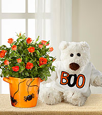 Spider Surprise Halloween Mini Rose with Plush Bear