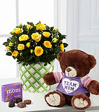 Sunshine Spirit Mini Rose with Chocolate and Plush - Exquisite