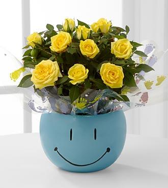 Sweet Baby Boy Smiles Mini Rose
